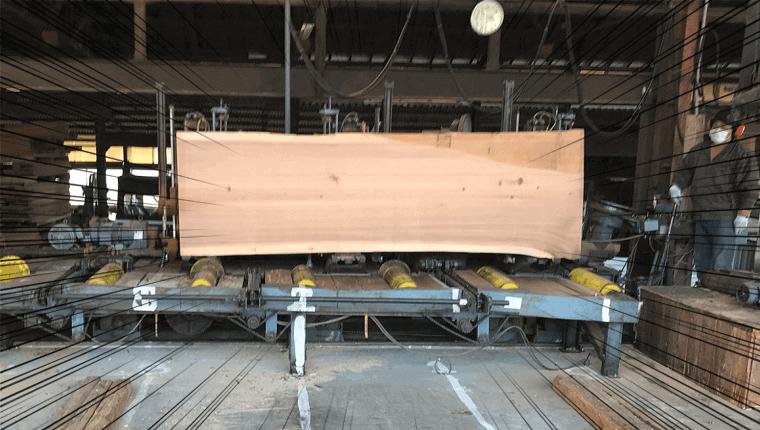無垢の吉野杉一枚板